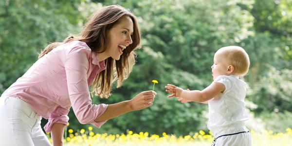 anne olmanın vakti geldi mi kariyer rehberi